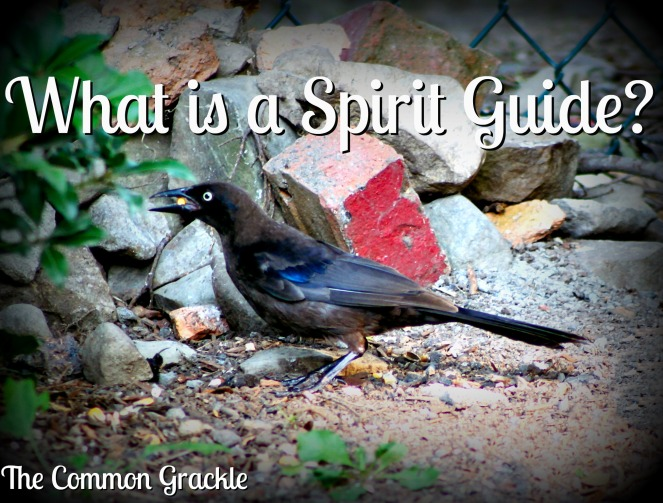 what is a spirit guide.jpg